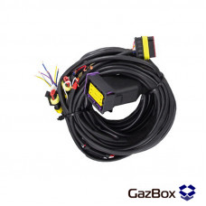 Проводка ГБО 4 поколения EG Basico 24.4
