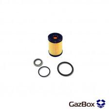 Фильтр газового клапана Valtek BFC (Filgaz) с кольцами
