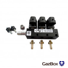 RAIL IG1 газовые форсунки на 3 цилиндра