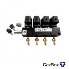 RAIL IG1 газовые форсунки на 4 цилиндра